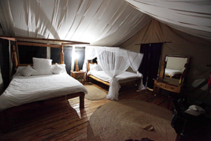 Tarangire Roika Tented Lodge